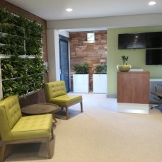 A mixture of natural products including recycled timber panels, living wall and stone floors set the tone on entry.